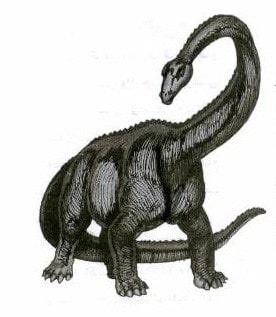 6- 40% من البشر يعتقدون أن البشر والديناصورات عاشوا فى نفس الزمن، وهذا خطأ.