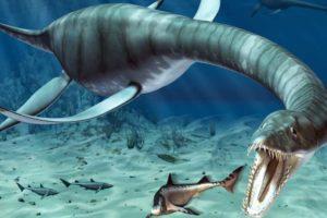 معلومات عن ديناصور البليزوصور