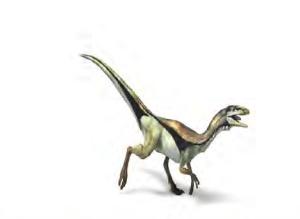 أصغر الديناصورات كم يبلغ طوله وكم وزنه