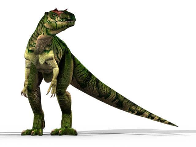 ألوصور