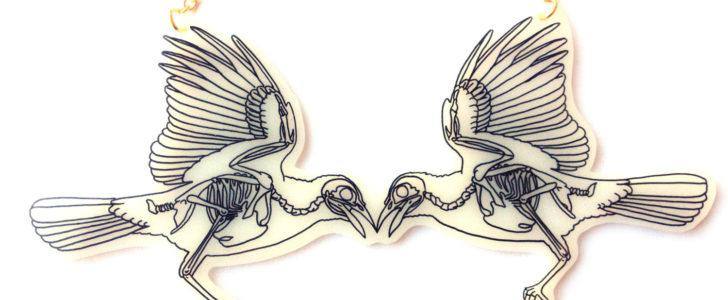 الهيكل العظمي للطائر