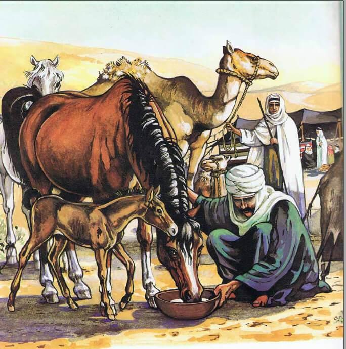 الخيل العربي
