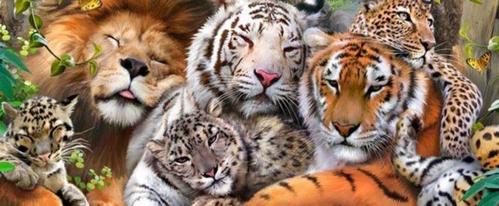 أسماء جميع حيوانات العالم