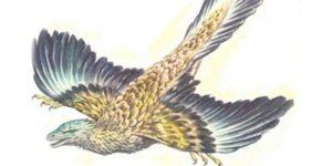 طائر الأركيوبتركس