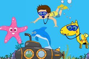 معلومات عن الكائنات البحرية للأطفال