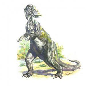 معلومات عن ديناصور الأناتوسوروس