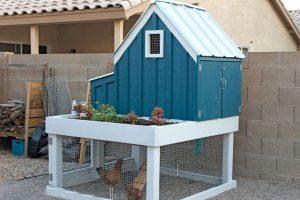 كيفية بناء قن دجاج