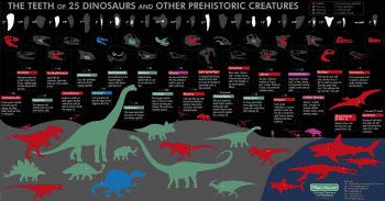 أسنان الديناصورات