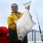 سمك الهلبوت الوصف ، الصور ، النظام الغذائي ، والحقائق المثيرة للاهتمام