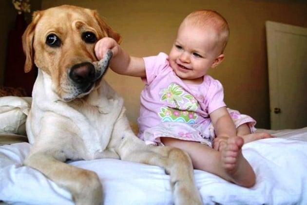 11 فائدة لتربية الحيوانات الأليفة أبرزها الوقاية من الربو وتقوية المناعة
