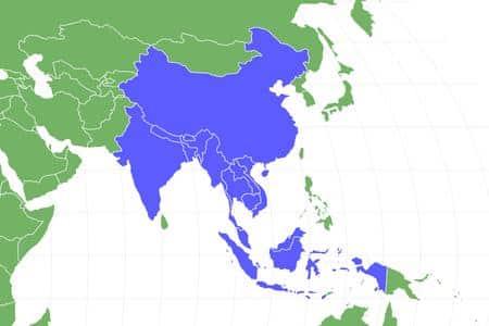 اين يعيش كلب الدول