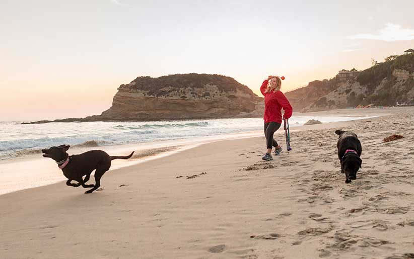 ممارسة ورمي أشياء للكلاب على الشاطئ من قبل امرأة